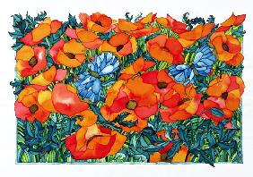 Poppies, 1998 (w/c on paper)