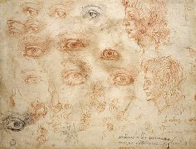 Studies of Two Heads, c.1525