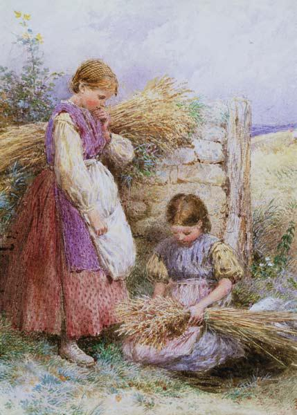 The Young Gleaners