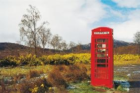 Telephone box in the Scottish wilderness (photo)