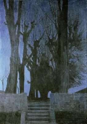 Willow Trees by Night