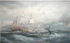 Colonial Whaler 'Fame'