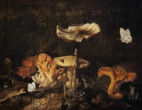 Still Life with Mushrooms and Butterflies