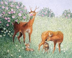 Deer Family (oil on canvas)