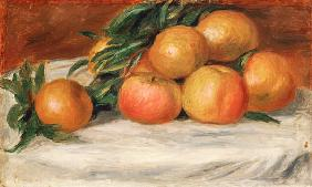 Still Life With Apples And Oranges