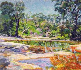 Wirreanda Creek, New South Wales, Australia (oil on canvas)