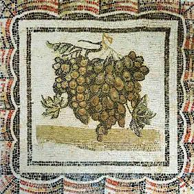 Bunch of white grapes, Roman mosaic (mosaic)