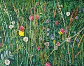 Plants of the Machair, 2008 (oil on canvas)