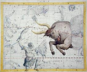 Constellation of Taurus, plate 2 from 'Atlas Coelestis', by John Flamsteed (1646-1710), published in