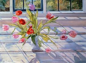 Tulips in the Evening Light, 1990