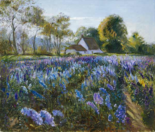 October Delphiniums (oil on canvas)