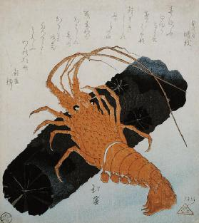 Langoustine with a Block of Charcoal, c.1830