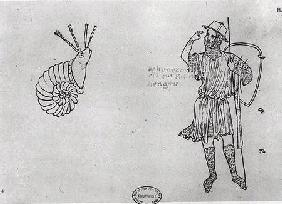 Fol.2 Snail and Hungarian soldier (facsimile copy) (pen & ink on paper)