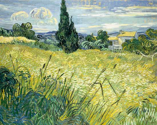 Image: Vincent van Gogh - Landscape with Green Corn
