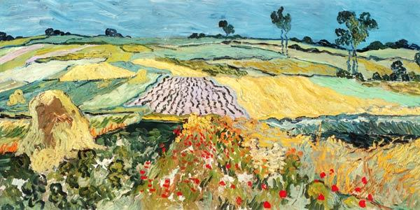 Fields at Auvers