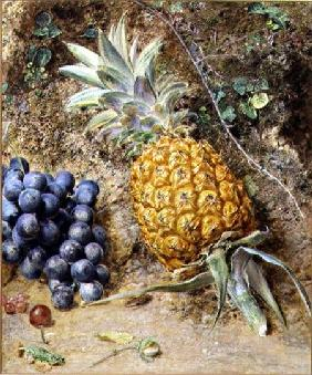 Grapes and a Pineapple