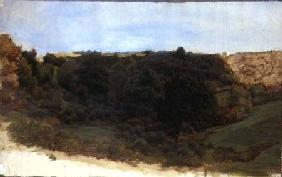 Landscape of a Woodland Gorge